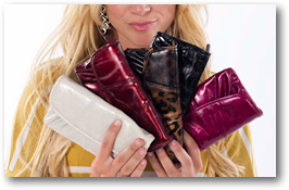 Shop Miche Wallet Styles